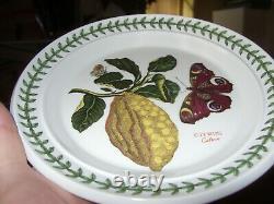 PORTMEIRION BOTANIC GARDEN CITRON (Citrus) 7 3/8 B&B/SIDE PLATE RARE VGC+BUYNOW