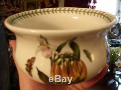 Portmeirion Botanic Garden Orange Cactus Rare&unique Pot / Rose Bowl Elder Large
