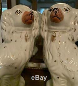 Rare Antique Staffordshire Spaniel Dogs Large Matched Pair