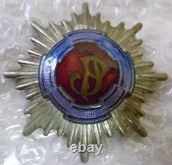 WW1 Poland Polish 1st Pilsudski Light Horse Regiment Badge RARE